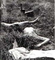 Estado en que se encontraba el cuerpo cuando fue hallado en el solar